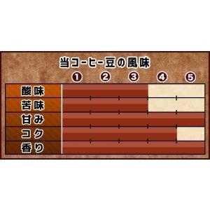 コーヒー豆 ブルーマウンテン No.1 コーヒー 豆 100g 浅中煎り ブルマン 珈琲豆 gurumekan 04