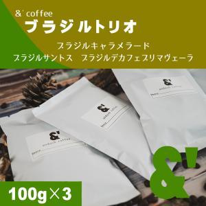 コーヒー豆 送料無料 珈琲豆 ブラジルスペシャルセット 3種で300g コーヒー 豆 焙煎後すぐ発送|gurumekan