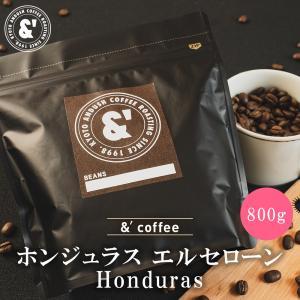 コーヒー豆 送料無料 珈琲豆 おてがるパックBIG & ホンジュラス 800g 約80杯分 コーヒー 豆 焙煎後すぐ発送 中煎り|gurumekan