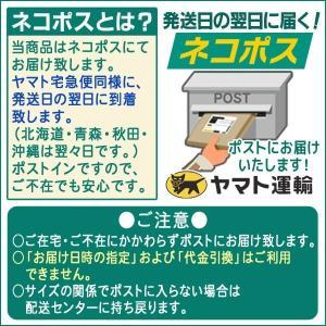 送料無料 水出しアイス珈琲バッグ3パック ブルーマウンテン アイスコーヒー 約1.8リットル分|gurumekan|03