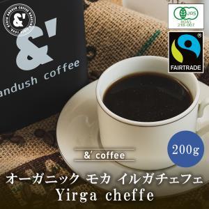 コーヒー豆 送料無料 珈琲豆 おてがるパックmini 有機豆100%使用 モカ イルガチェフェ G2 200g 約20杯分 コーヒー 豆 中煎り gurumekan