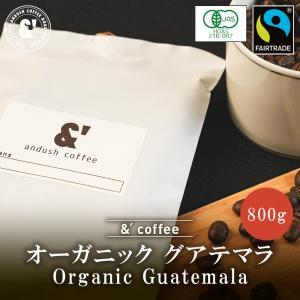 コーヒー豆 送料無料 珈琲豆 おてがるパックBIG 有機JAS認証生豆100%使用 グアテマラ アティトゥラン 800g 約80杯分 コーヒー 豆 中深煎り|gurumekan