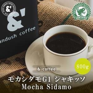 コーヒー豆 送料無料 珈琲豆 おてがるパックBIG 有機JAS認証生豆100%使用 モカ シダモ G1 シャキッソ 800g 約80杯分 コーヒー 焙煎後すぐ発送 中深煎り|gurumekan