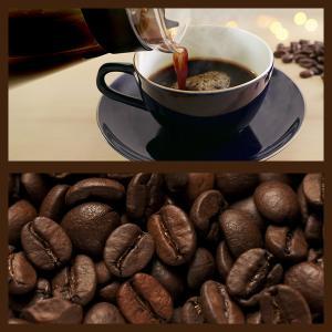 ポイント消化 お試し コーヒー豆 送料無料 珈琲豆 アンダッシュコーヒー おためし セット マイルド コーヒー 豆 4種で200g gurumekan 05
