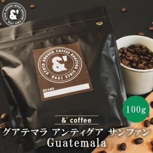 コーヒー豆 グアテマラ リオコロラド 100g 約10杯分 コーヒー 豆 焙煎後すぐ発送 やや深煎り|gurumekan