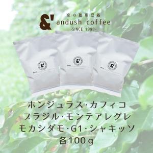 コーヒー豆 送料無料 珈琲豆 選べるスタンダードコーヒー豆セット 珈琲豆 300g コーヒー 豆 焙煎後すぐ発送|gurumekan
