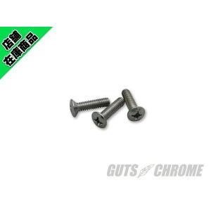 10%OFF S&Sエアクリーナーカバーのステンレスボルト gutschrome