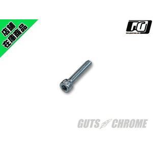 72-81年 スイッチハウジング用スクリュー HEX|gutschrome