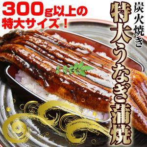 うなぎ蒲焼1尾約300g(中国産)特大