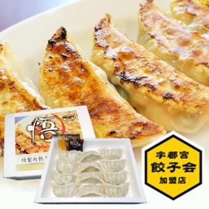 特製肉餃子(1箱12個入)|gyoza-gokuu
