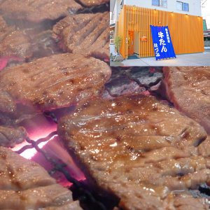本場 仙台の味 熟成 牛たん みそ味 500g (牛タン5人前)|gyutanhozumi