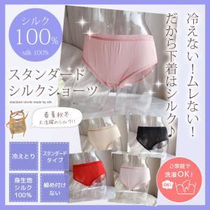 ショーツ レディース シルク スタンダードシルクショーツ シルク100% 冷えとり 下着 やわらか お尻 すっぽり 日本製 【ネコポス対応可】|h-blue
