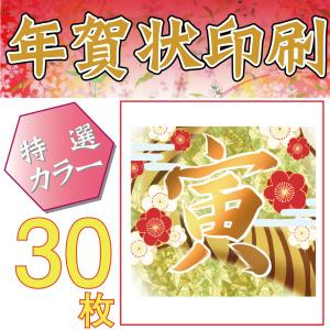 日本郵便発行のお年玉くじ付年賀はがきに印刷する特選カラーの年賀状印刷。 インクジェット紙を使用して、...