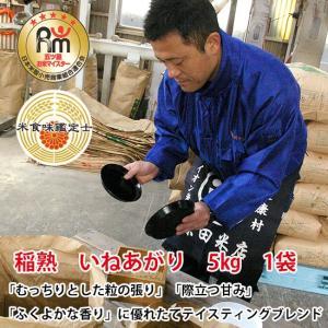 匠ブランディング米 稲熟 いねあがり5kg 1袋|h-kometen