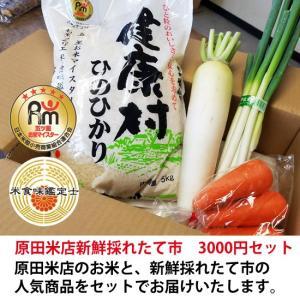 原田米店新鮮採れたて市 3000円セット h-kometen