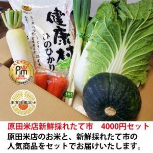 原田米店新鮮採れたて市 4000円セット h-kometen