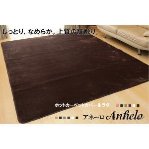 ホットカーペット対応 ソフトな扁平糸使用ラグ アネーロ ベージュ 130×185cm|habitz-mall