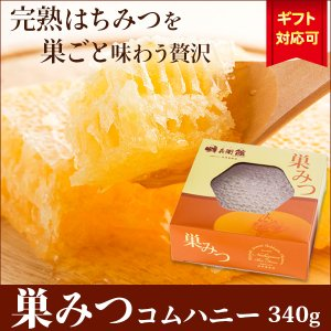 はちみつ 蜂蜜 ハチミツ 食べる蜂の巣 巣蜜(340g)巣みつ コムハニー コムハネー combhoney