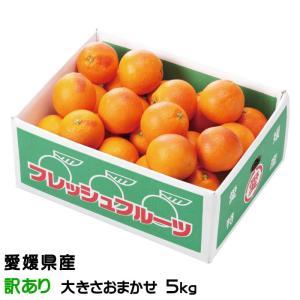 みかん タロッコオレンジ ブラッドオレンジ 風のいたずら 訳あり 大きさおまかせ 5kg 愛媛県 中...