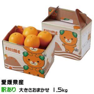 みかん タロッコオレンジ ブラッドオレンジ 風のいたずら 訳あり 大きさおまかせ 2kg みきゃん箱...