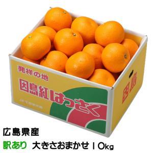 紅八朔 広島県 因島産  風のいたずら ちょっと訳あり   大きさおまかせ 約10kg 送料無料 は...