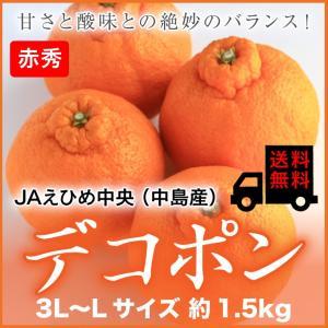 (送料無料) JAえひめ中央(中島産) デコポン 赤秀 3L...