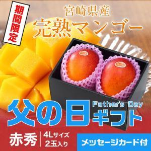 遅れてごめんね 父の日ギフト 宮崎県産 JA宮崎 完熟マンゴ...