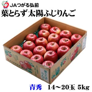 りんご 葉とらず太陽ふじりんご  青森県産 JAつがる弘前  糖度12度以上 青秀 14〜20玉 5...