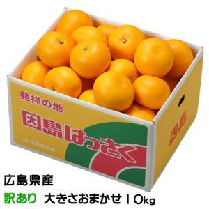 八朔 はっさく 広島県産 JA尾道市 因島選果場 風のいたずら ちょっと訳あり 約10kg 送料無料...