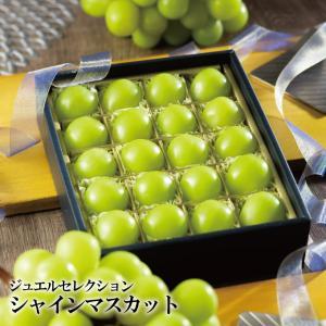 シャインマスカット ジュエルセレクション 岡山県産 特秀 3L 20粒入り プチギフト 送料無料 ギフト 葡萄 ぶどう ブドウ