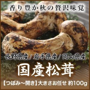 松茸 まつたけ 国産 国産松茸 日本産 産地厳選 秀品 つぼみ〜ひらき 大きさお任せ 約100gの画像