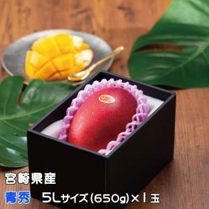 宮崎県産 JA宮崎 完熟マンゴー 青秀 5Lサイズ 1玉入り...