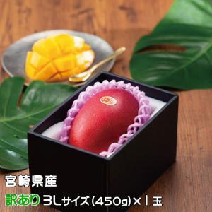 マンゴー みやざき完熟マンゴー 風のいたずら 訳あり 3Lサイズ×1玉 宮崎県産 ギフト 母の日 お...