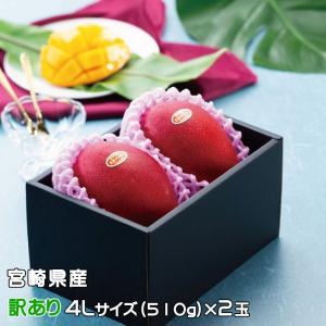 マンゴー みやざき完熟マンゴー 風のいたずら 訳あり 4Lサイズ×2玉 宮崎県産 ギフト 母の日 お...