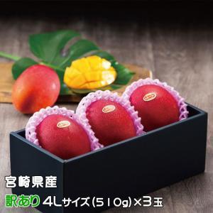 マンゴー みやざき完熟マンゴー 風のいたずら 訳あり 4Lサイズ×3玉 宮崎県産 ギフト 母の日 お...