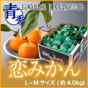 長崎県産 『恋みかん』 越冬完熟袋掛け葉付きみかん 秀品 Mサイズ  (約4.0kg)  (送料無料)