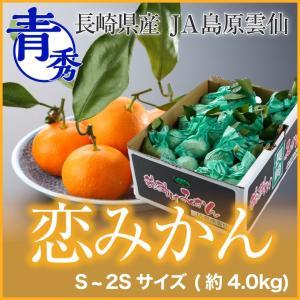 長崎県産 『恋みかん』 越冬完熟袋掛け葉付きみかん 秀品 Sサイズ  (約4.0kg)  (送料無料)