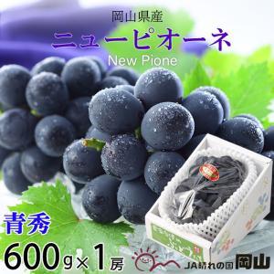 ニューピオーネは岡山生まれの種なし葡萄です。食べ応え抜群の大粒、芳醇で溢れるほどの甘い果汁と16度を...