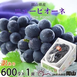 ぶどう ニューピオーネ 風のいたずら ちょっと訳あり 600g×1房 岡山県産 JAおかやま 葡萄 ...