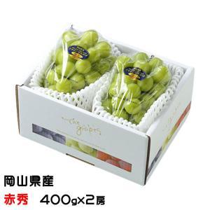 ぶどう シャインマスカット 晴王 赤秀 400g×2房 岡山県産 JAおかやま 葡萄 ブドウ お中元