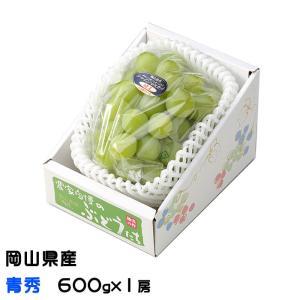 ぶどう シャインマスカット 晴王 青秀 600g×1房 岡山県産 JAおかやま  葡萄 ブドウ お中...