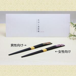 箸 四季−色葉− |hacito