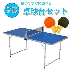 地球家具 卓球台 セット ラケット2つ ボール3つ ネット付 折りたたみテーブル アウトドア