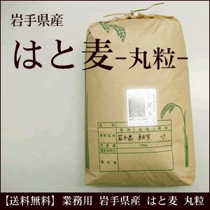 業務用 はと麦 丸粒 岩手県産 10kg 送料無料 hadaplan