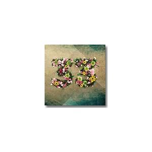 NERY / 33 (LP)|hafen