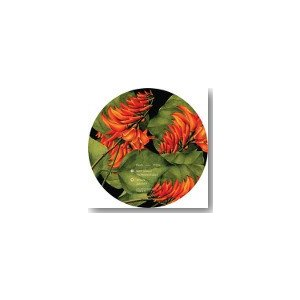 KAIDO / JUNCTION 9 EP (7