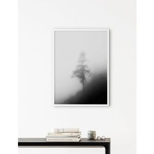 NOUROM | LONELY TREE IN THE MIST | アートプリント/ポスター (50x70cm)|hafen