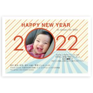 写真入り 年賀状  私製年賀はがき 10枚  NBS-16 出産報告も可 年賀状 印刷 2020 ね...