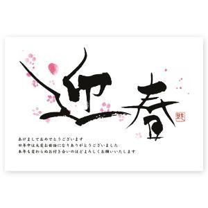 年賀はがき 10枚   2022 年賀状 とら 寅年 お年玉くじ付き  NE-04|hagaki