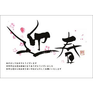 【私製年賀はがき 10枚】 2019年亥年 年賀状 印刷 NE0905-005 猪 いのしし|hagaki
